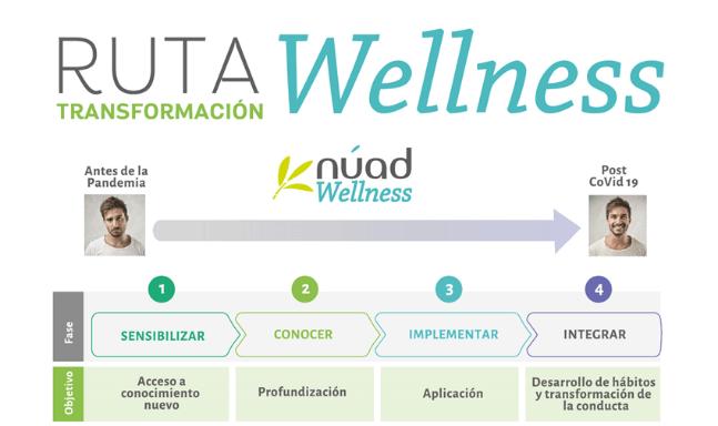 ruta wellness
